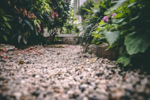 Hedge your garden